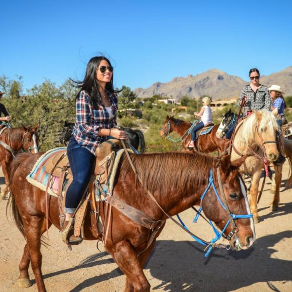 An ultimate guide to Horseback Riding